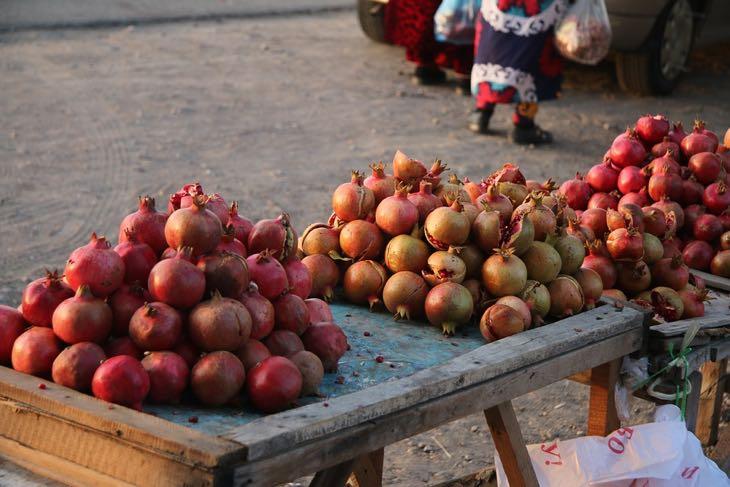 uzbekistan autumn