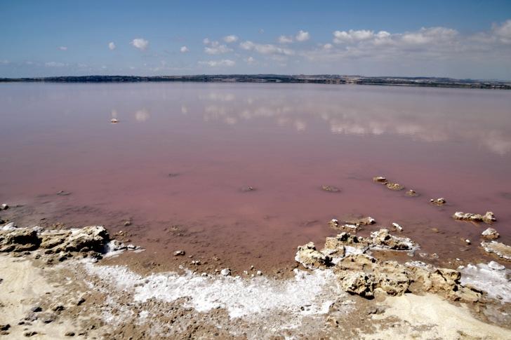 pink lake spain