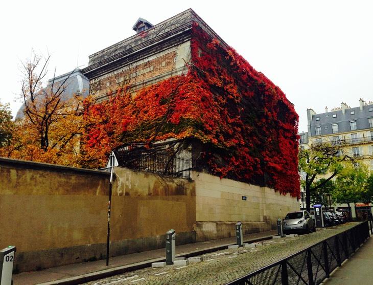 париж в октябре