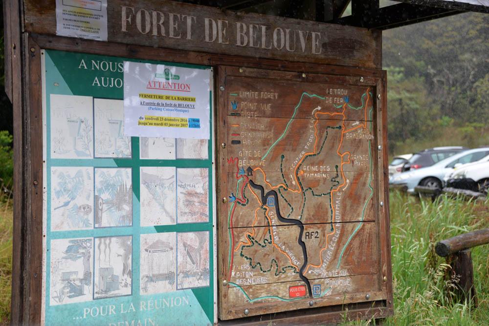 карта лес белув