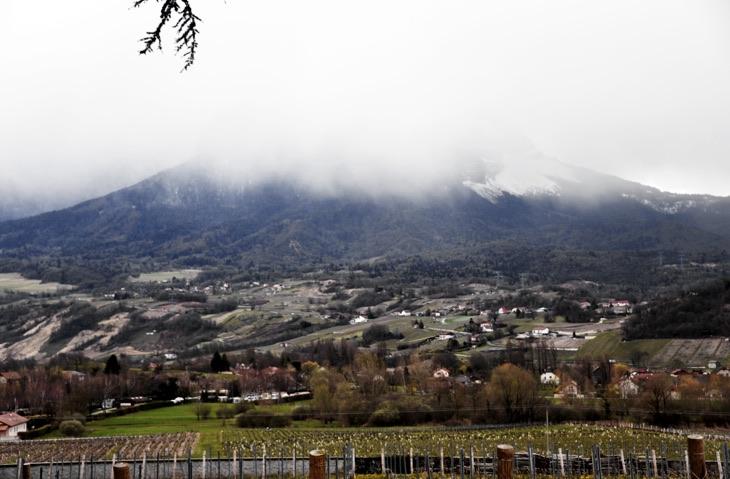 winery rhone alp