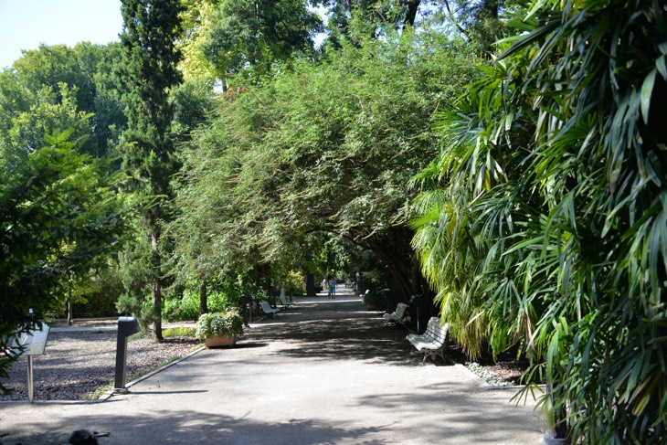 ботанические сады валенсия