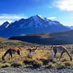 фото пейзажей чили